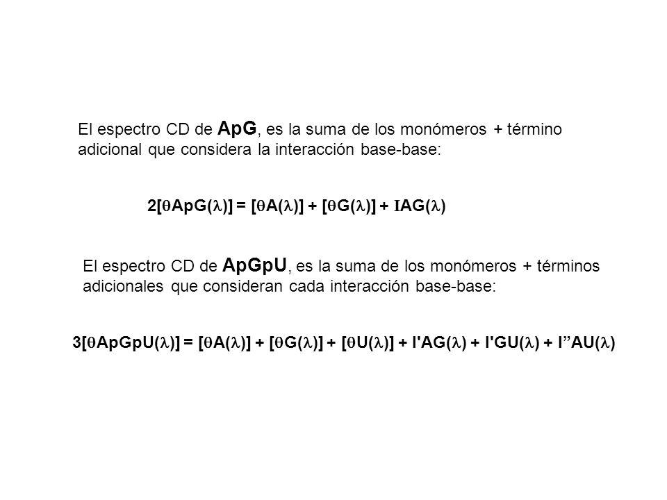 2[ ApG( )] = [ A( )] + [ G( )] + I AG( ) El espectro CD de ApG, es la suma de los monómeros + término adicional que considera la interacción base-base: El espectro CD de ApGpU, es la suma de los monómeros + términos adicionales que consideran cada interacción base-base: 3[ ApGpU( )] = [ A( )] + [ G( )] + [ U( )] + I AG( ) + I GU( ) + IAU( )