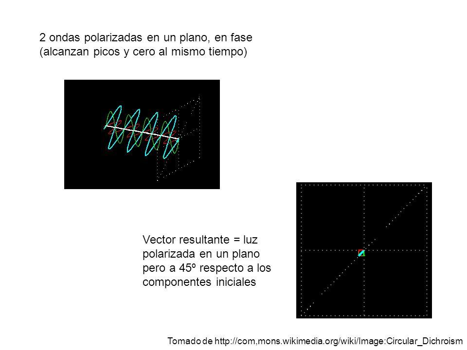 2 ondas polarizadas en un plano, en fase (alcanzan picos y cero al mismo tiempo) Vector resultante = luz polarizada en un plano pero a 45º respecto a los componentes iniciales Tomado de http://com,mons.wikimedia.org/wiki/Image:Circular_Dichroism