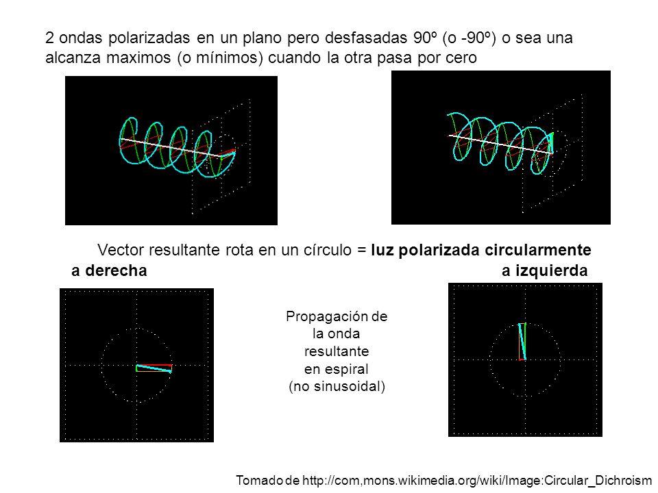 2 ondas polarizadas en un plano pero desfasadas 90º (o -90º) o sea una alcanza maximos (o mínimos) cuando la otra pasa por cero Vector resultante rota en un círculo = luz polarizada circularmente a derechaa izquierda Propagación de la onda resultante en espiral (no sinusoidal) Tomado de http://com,mons.wikimedia.org/wiki/Image:Circular_Dichroism