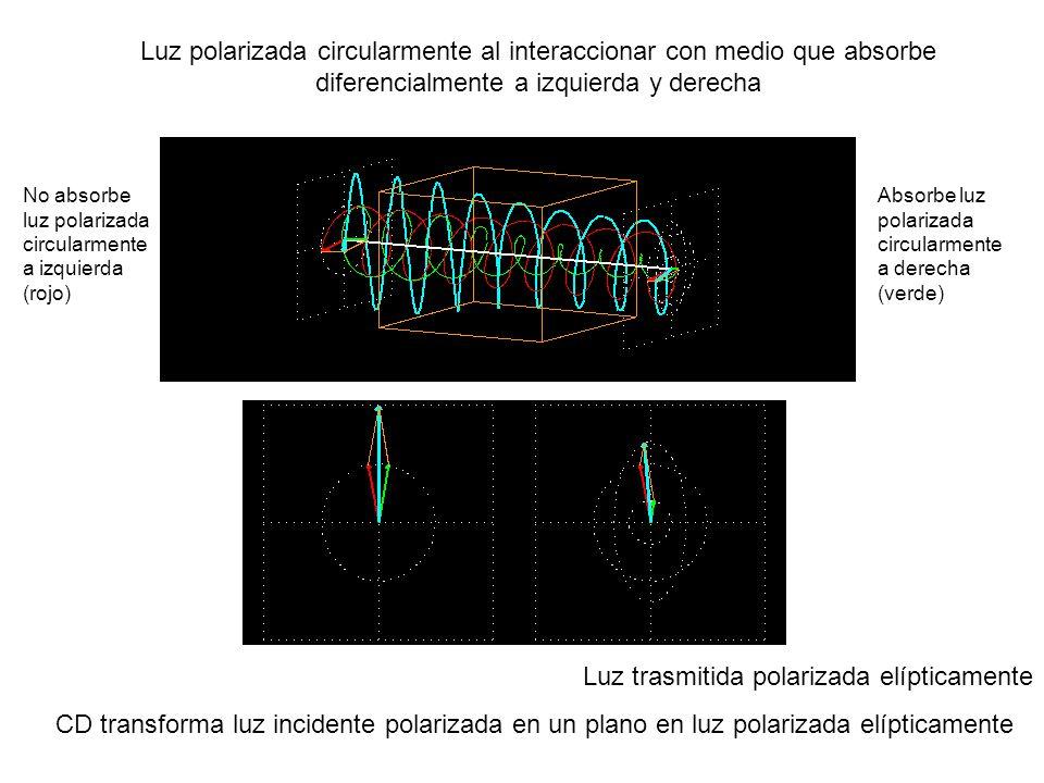 Luz trasmitida polarizada elípticamente CD transforma luz incidente polarizada en un plano en luz polarizada elípticamente Luz polarizada circularmente al interaccionar con medio que absorbe diferencialmente a izquierda y derecha Absorbe luz polarizada circularmente a derecha (verde) No absorbe luz polarizada circularmente a izquierda (rojo)