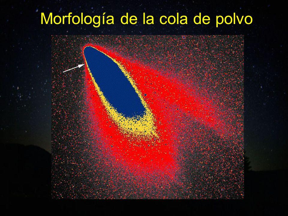 Morfología de la cola de polvo