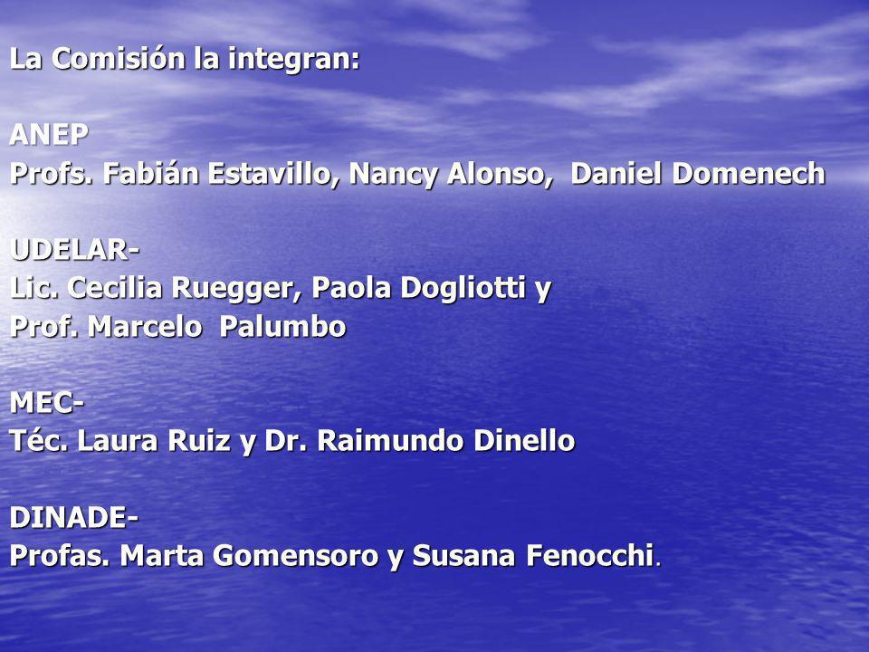 La Comisión la integran: ANEP Profs. Fabián Estavillo, Nancy Alonso, Daniel Domenech UDELAR- Lic. Cecilia Ruegger, Paola Dogliotti y Prof. Marcelo Pal
