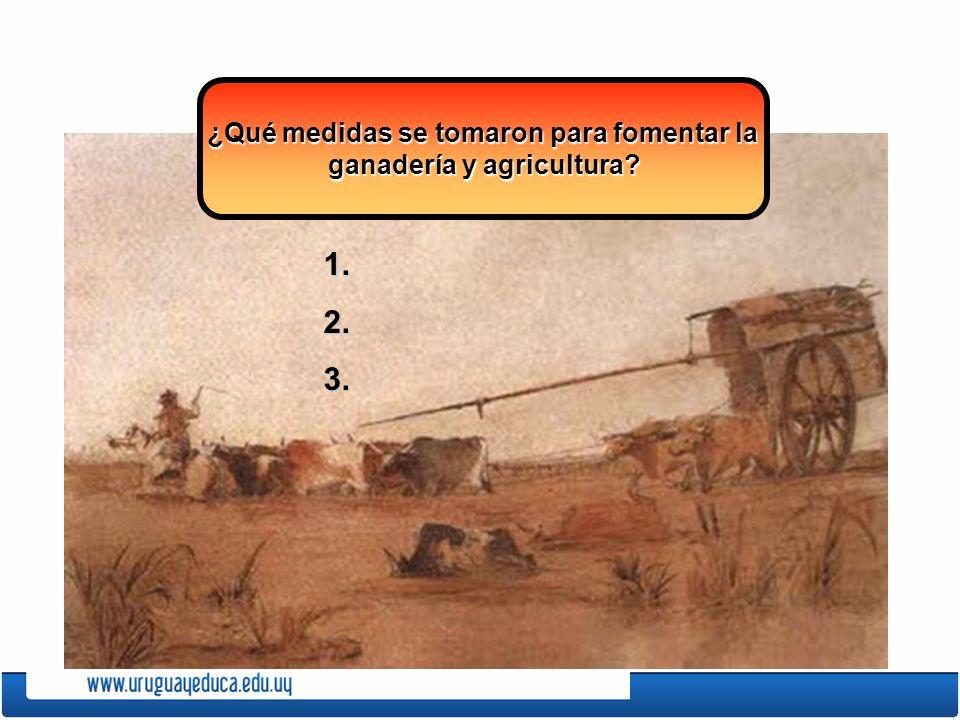 ¿Qué medidas se tomaron para fomentar la ganadería y agricultura? 1.2.3.
