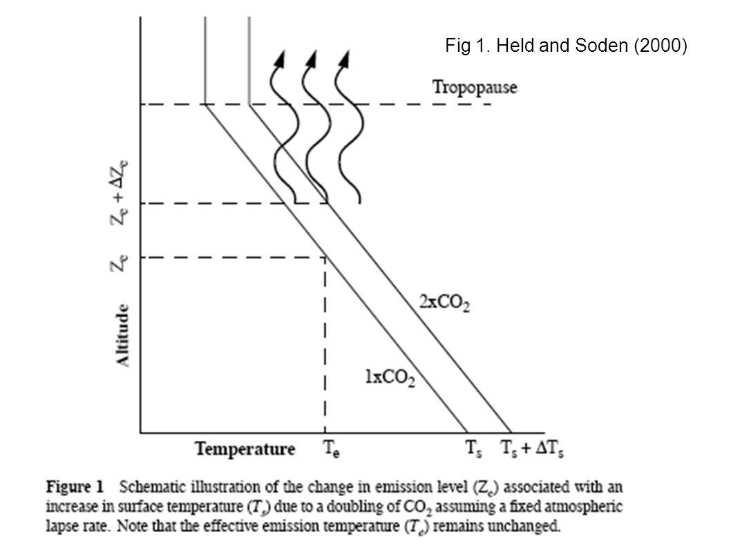 Retroalimentacion de vapor de agua aumenta la respuesta al forzante.