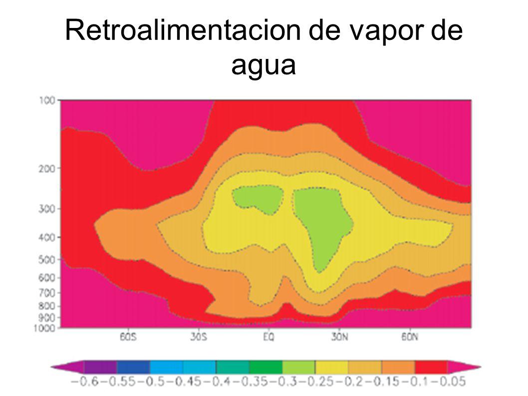 Retroalimentacion de vapor de agua