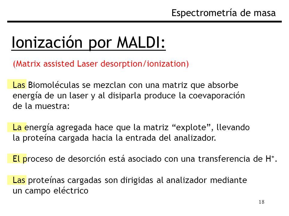 18 Ionización por MALDI: Espectrometría de masa (Matrix assisted Laser desorption/ionization) Las Biomoléculas se mezclan con una matriz que absorbe energía de un laser y al disiparla produce la coevaporación de la muestra: La energía agregada hace que la matriz explote, llevando la proteína cargada hacia la entrada del analizador.
