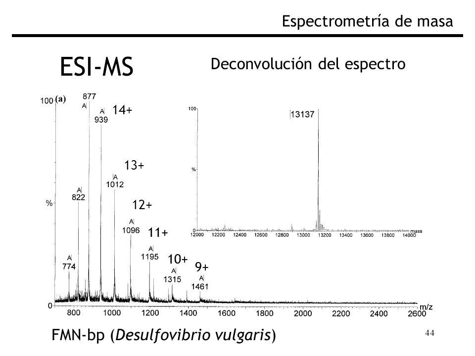 44 ESI-MS Espectrometría de masa Deconvolución del espectro FMN-bp (Desulfovibrio vulgaris) 10+ 9+ 11+ 13+ 12+ 14+ 10+ 9+ 11+