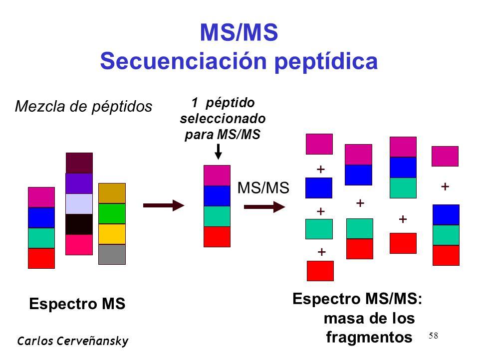 58 MS/MS Secuenciación peptídica Espectro MS/MS: masa de los fragmentos Mezcla de péptidos MS/MS + + + + + + 1 péptido seleccionado para MS/MS Espectro MS Carlos Cerveñansky