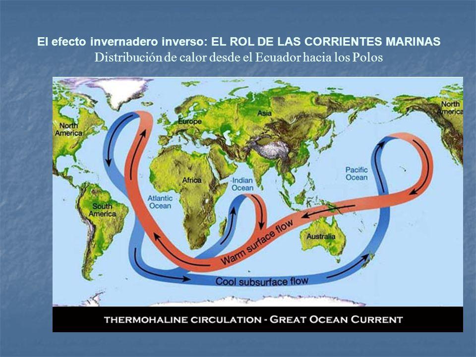 Derretimiento de hielo polar por sobrecalentamiento que puede detener el gran transportador. Balance de densidades en agua dulce y salada.