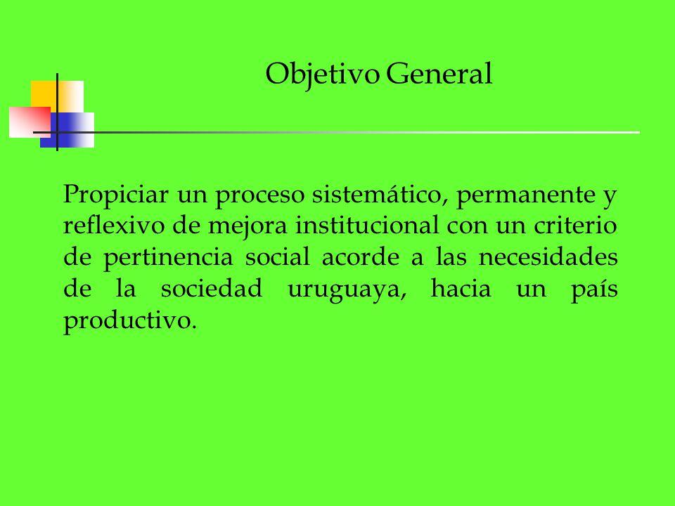 Objetivo General Propiciar un proceso sistemático, permanente y reflexivo de mejora institucional con un criterio de pertinencia social acorde a las n