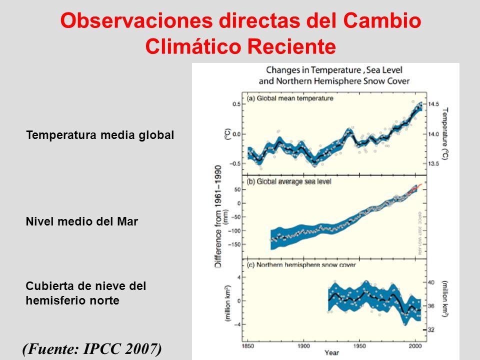 Observaciones directas del Cambio Climático Reciente (Fuente: IPCC 2007) Temperatura media global Nivel medio del Mar Cubierta de nieve del hemisferio