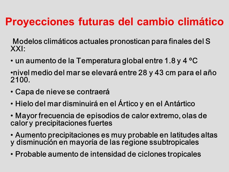 Proyecciones futuras del cambio climático Modelos climáticos actuales pronostican para finales del S XXI: un aumento de la Temperatura global entre 1.