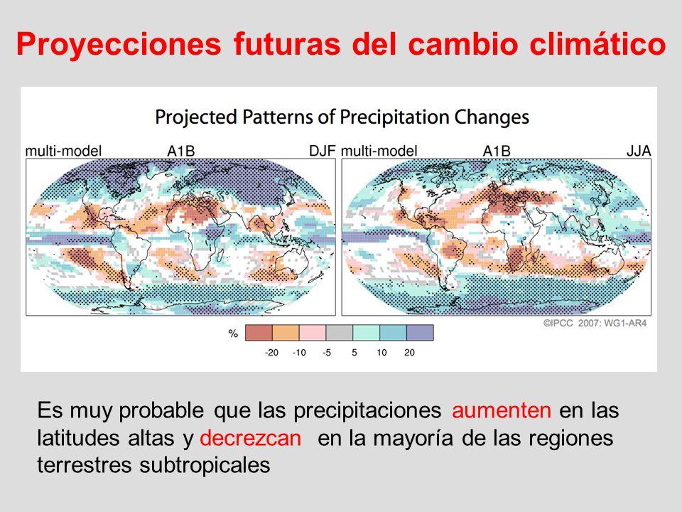 Es muy probable que las precipitaciones aumenten en las latitudes altas y decrezcan en la mayoría de las regiones terrestres subtropicales Proyeccione
