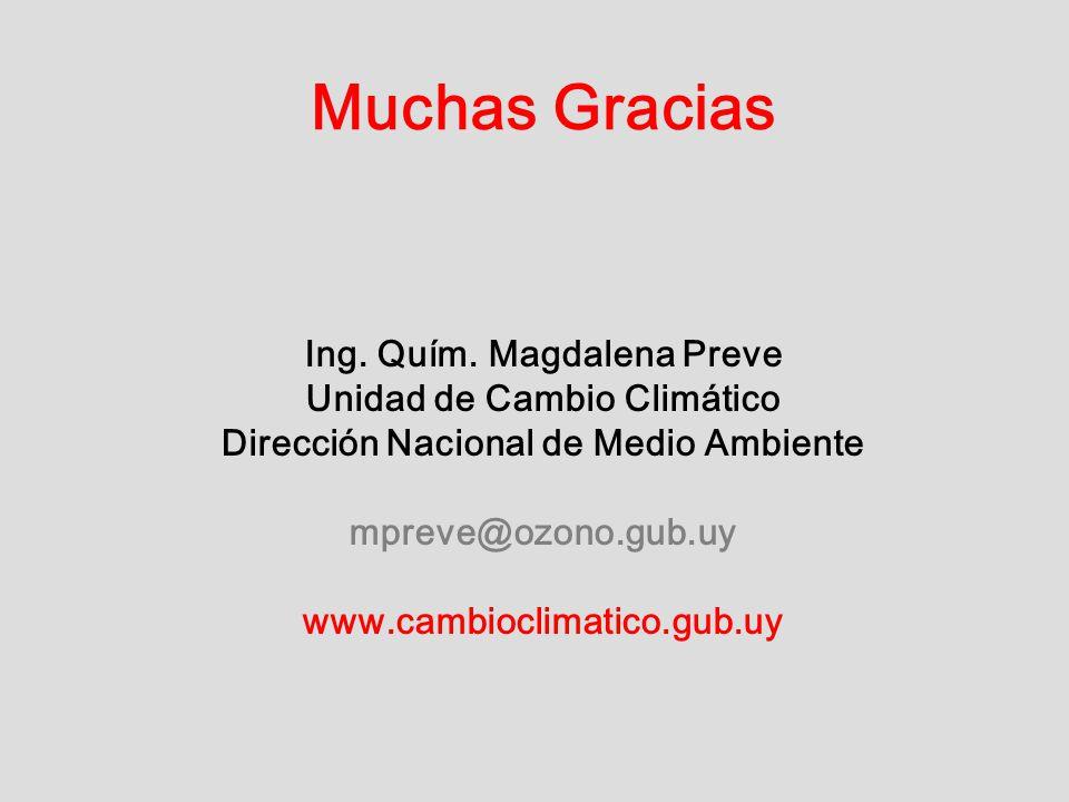 Muchas Gracias Ing. Quím. Magdalena Preve Unidad de Cambio Climático Dirección Nacional de Medio Ambiente mpreve@ozono.gub.uy www.cambioclimatico.gub.