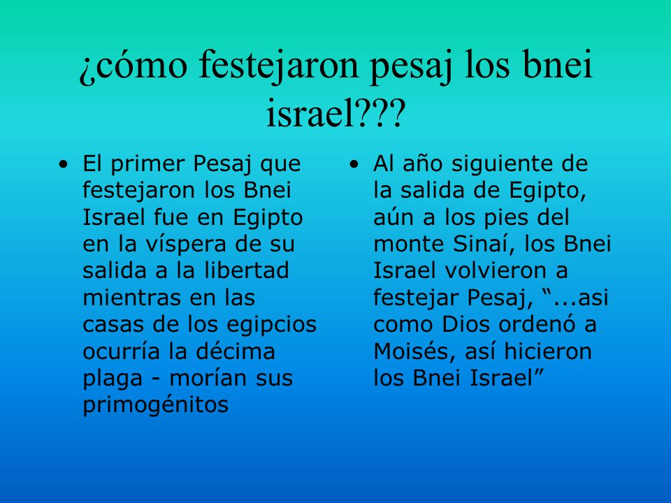 ¿cómo festejaron pesaj los bnei israel??.