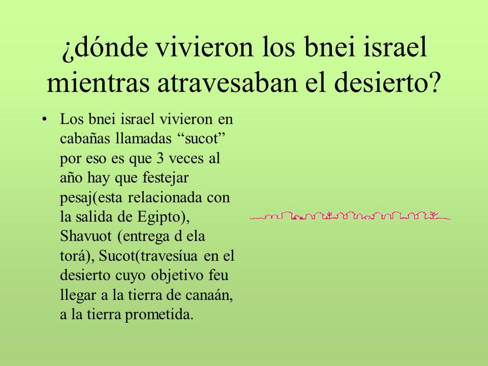 ¿dónde vivieron los bnei israel mientras atravesaban el desierto.
