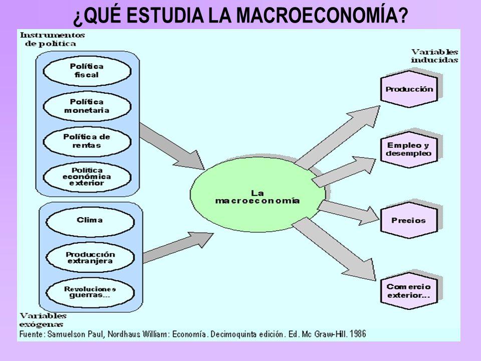 ¿QUÉ ESTUDIA LA MACROECONOMÍA?