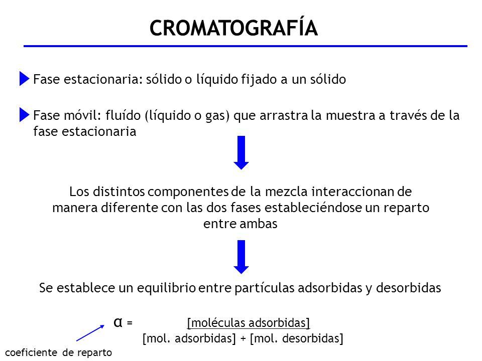 CROMATOGRAFÍA Fase estacionaria: sólido o líquido fijado a un sólido Fase móvil: fluído (líquido o gas) que arrastra la muestra a través de la fase es