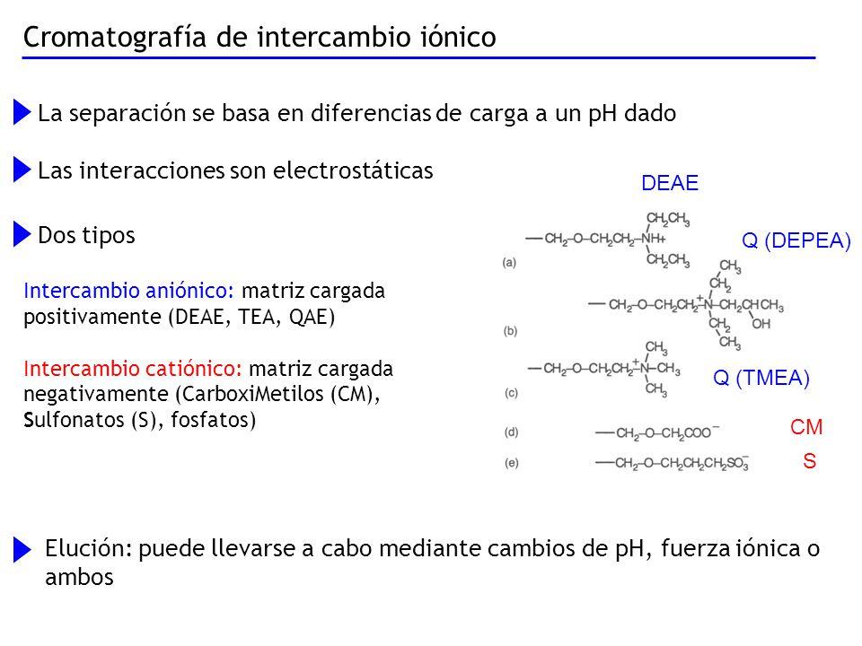 Cromatografía de intercambio iónico La separación se basa en diferencias de carga a un pH dado Las interacciones son electrostáticas Dos tipos Elución