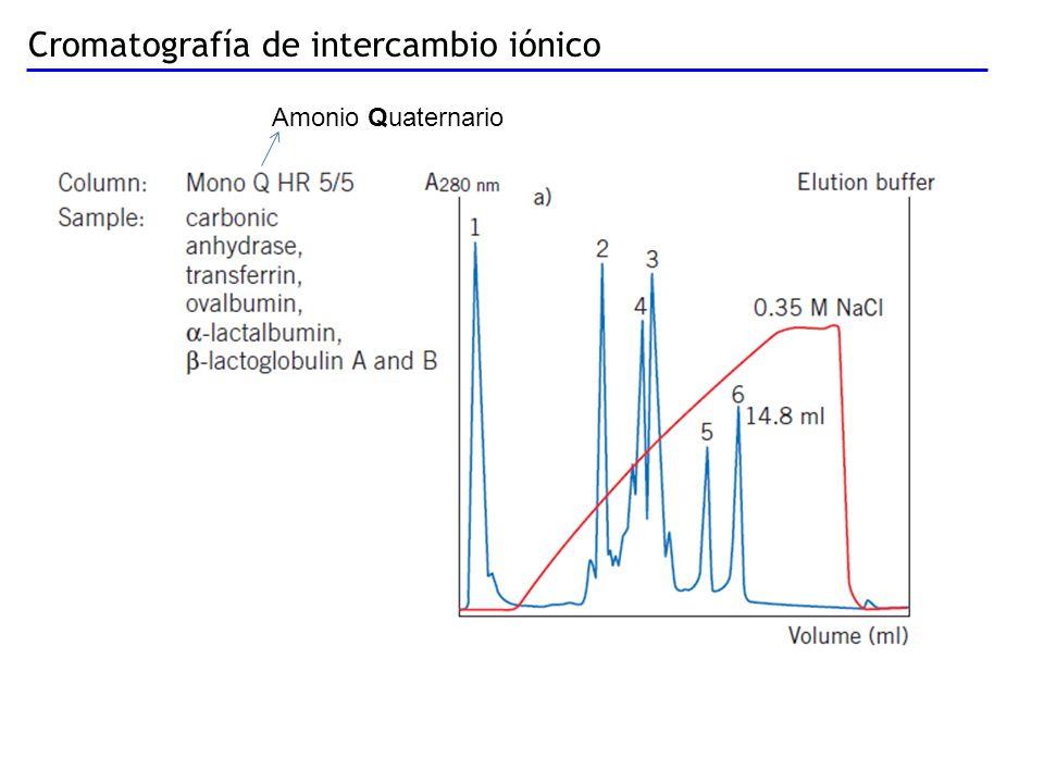 Cromatografía de intercambio iónico Amonio Quaternario