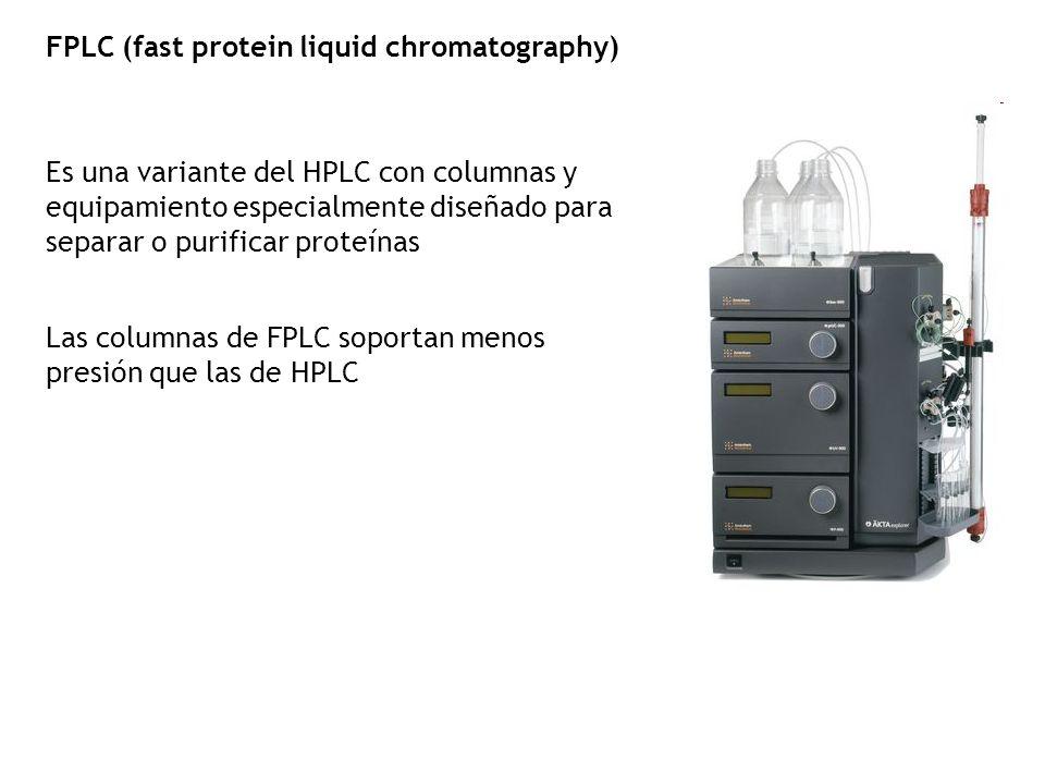 FPLC (fast protein liquid chromatography) Es una variante del HPLC con columnas y equipamiento especialmente diseñado para separar o purificar proteín