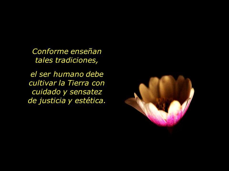 Conforme enseñan tales tradiciones, el ser humano debe cultivar la Tierra con cuidado y sensatez de justicia y estética.