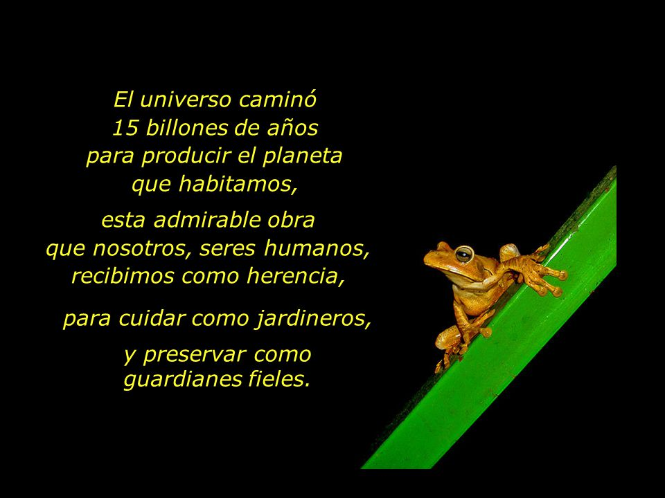 El universo caminó 15 billones de años para producir el planeta que habitamos, esta admirable obra que nosotros, seres humanos, recibimos como herenci