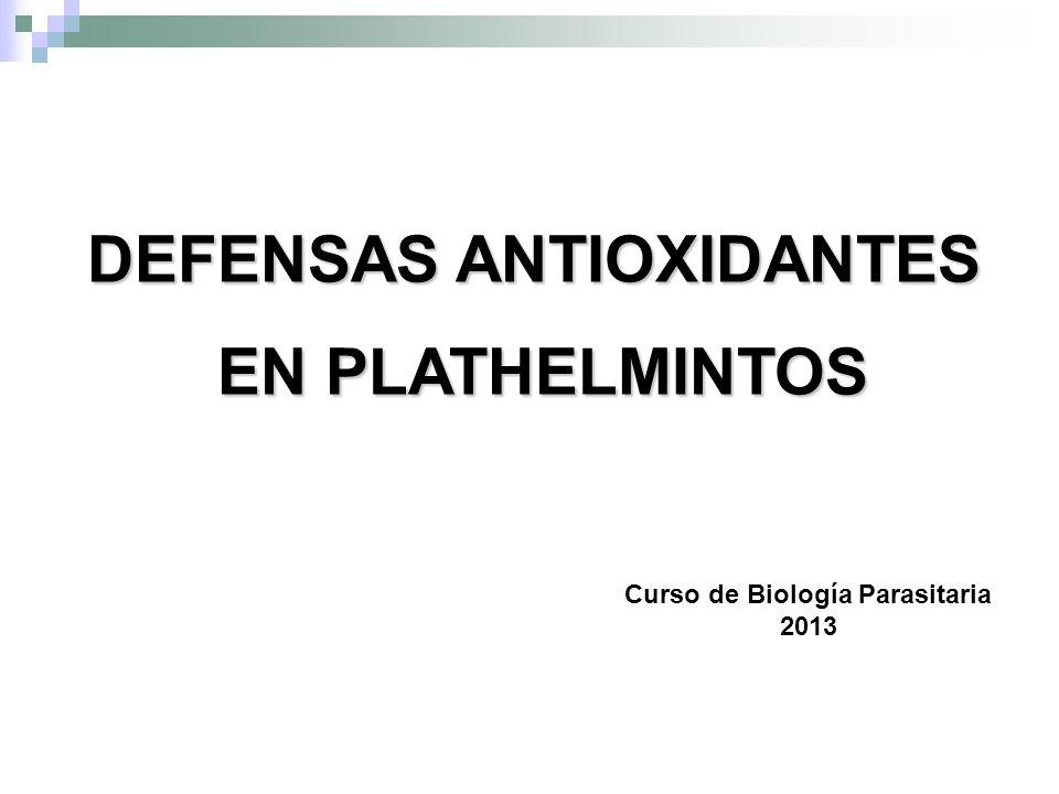 DEFENSAS ANTIOXIDANTES EN PLATHELMINTOS EN PLATHELMINTOS Curso de Biología Parasitaria 2013