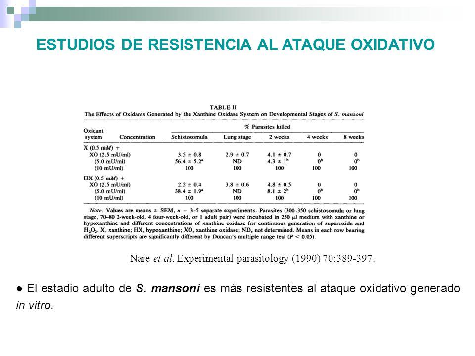 El estadio adulto de S. mansoni es más resistentes al ataque oxidativo generado in vitro. Nare et al. Experimental parasitology (1990) 70:389-397. EST