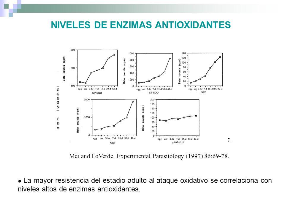 NIVELES DE ENZIMAS ANTIOXIDANTES Nare et al., 1990. Experimental parasitology, 70:389-397. Mei and LoVerde. Experimental Parasitology (1997) 86:69-78.