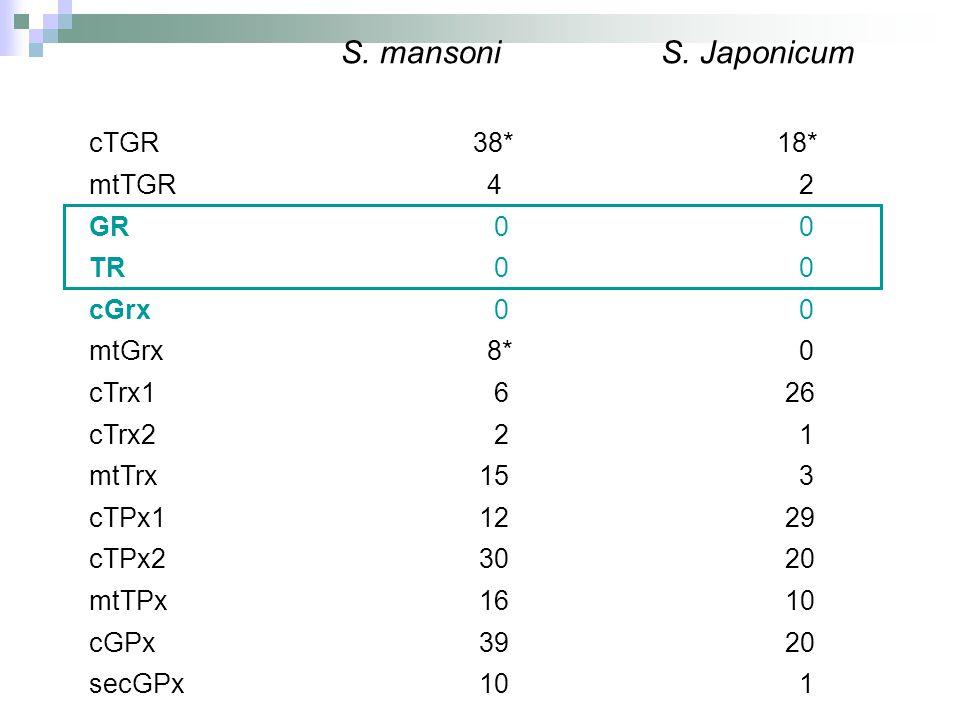 S. mansoni S. Japonicum cTGR 38* 18* mtTGR 4 2 GR 0 0 TR 0 0 cGrx 0 0 mtGrx 8* 0 cTrx1 6 26 cTrx2 2 1 mtTrx 15 3 cTPx1 12 29 cTPx2 30 20 mtTPx 16 10 c