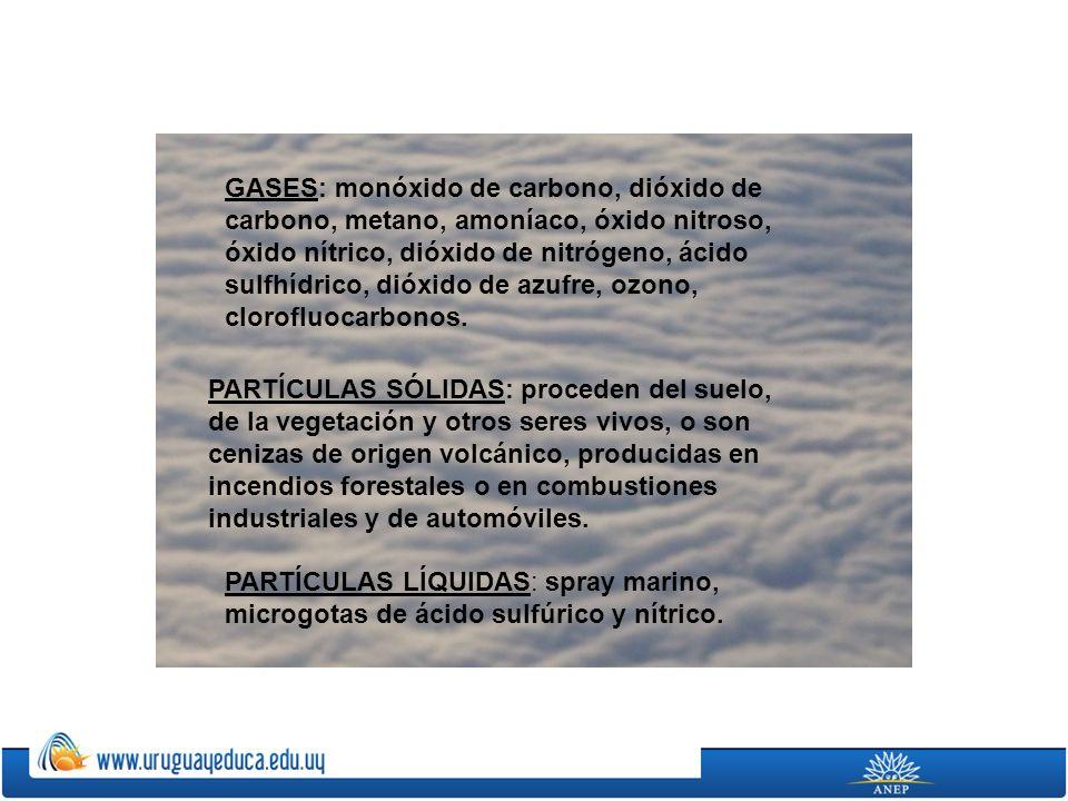 GASES: monóxido de carbono, dióxido de carbono, metano, amoníaco, óxido nitroso, óxido nítrico, dióxido de nitrógeno, ácido sulfhídrico, dióxido de az
