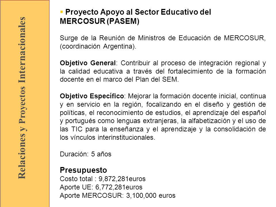 Relaciones y Proyectos Internacionales Proyecto Apoyo al Sector Educativo del MERCOSUR (PASEM) Surge de la Reunión de Ministros de Educación de MERCOSUR, (coordinación Argentina).