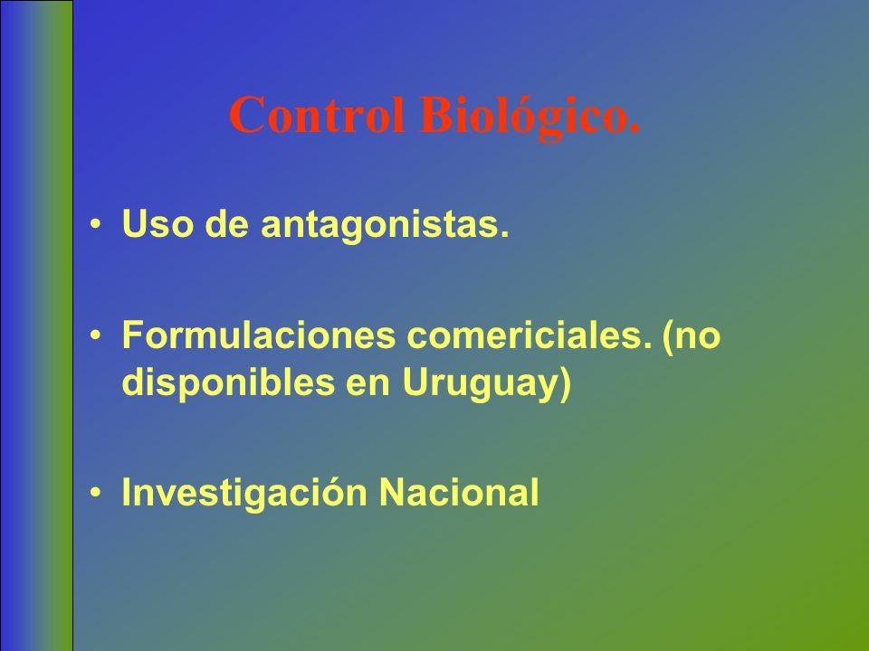Control Biológico. Uso de antagonistas. Formulaciones comericiales. (no disponibles en Uruguay) Investigación Nacional