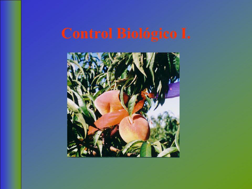 Control Biológico I.