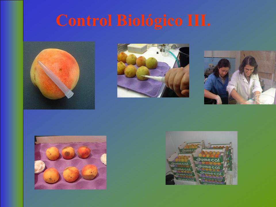 Control Biológico III.