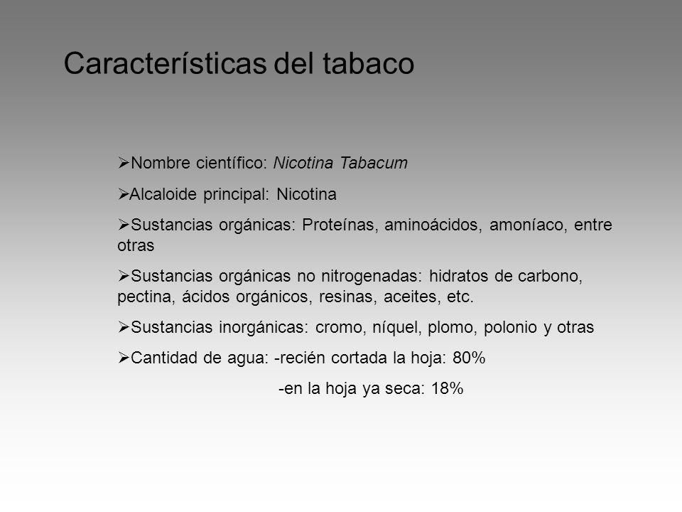Características del tabaco Nombre científico: Nicotina Tabacum Alcaloide principal: Nicotina Sustancias orgánicas: Proteínas, aminoácidos, amoníaco, entre otras Sustancias orgánicas no nitrogenadas: hidratos de carbono, pectina, ácidos orgánicos, resinas, aceites, etc.