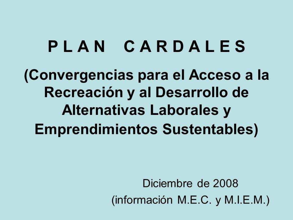 P L A N C A R D A L E S (Convergencias para el Acceso a la Recreación y al Desarrollo de Alternativas Laborales y Emprendimientos Sustentables) Diciembre de 2008 (información M.E.C.