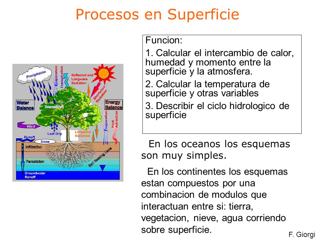 El modelo de balde Bucket Model E = E p = 1 for w w 0 = w/w 0 for w w 0 Water depth, w Critical depth, w 0 Runoff Precipitation Evaporation F.
