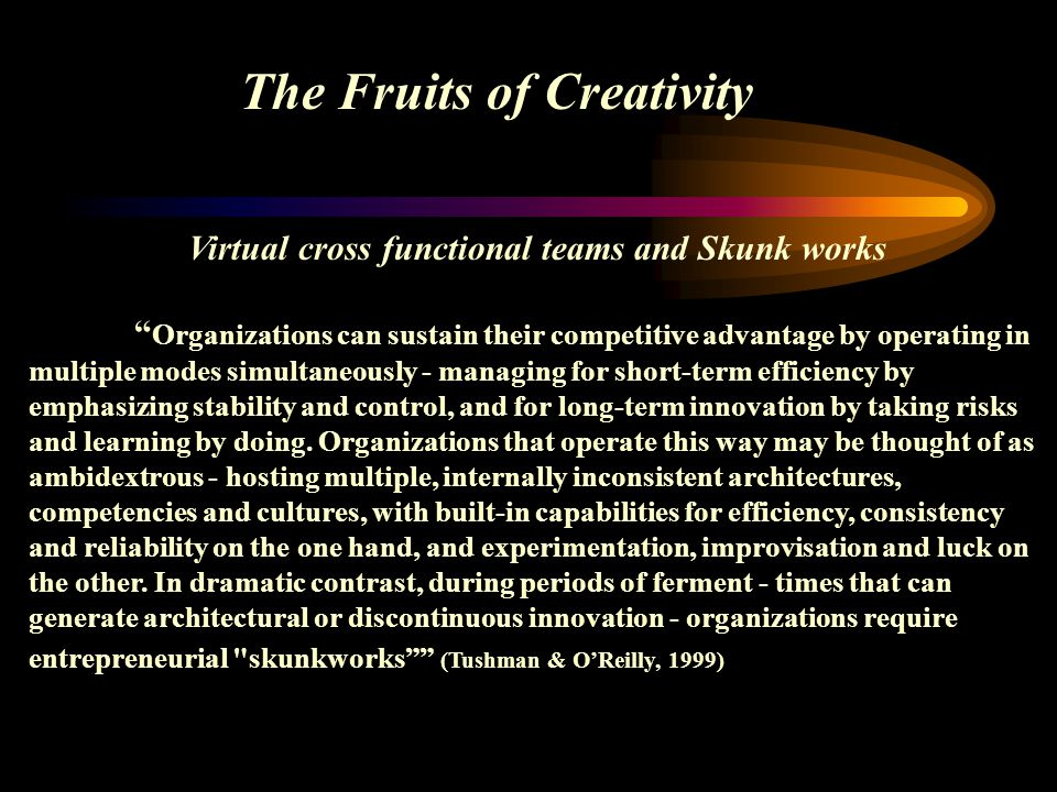 Virtual cross functional teams and Skunk works Organizations can sustain their competitive advantage by operating in multiple modes simultaneously - m