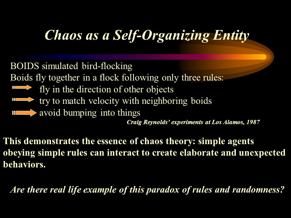 Chaos as a Self-Organizing Entity BOIDS simulated bird-flocking Boids fly together in a flock following only three rules: fly in the direction of othe