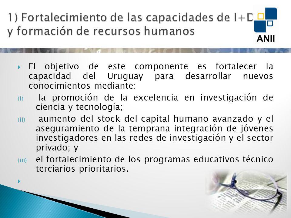 El objetivo de este componente es fortalecer la capacidad del Uruguay para desarrollar nuevos conocimientos mediante: (i) la promoción de la excelencia en investigación de ciencia y tecnología; (ii) aumento del stock del capital humano avanzado y el aseguramiento de la temprana integración de jóvenes investigadores en las redes de investigación y el sector privado; y (iii) el fortalecimiento de los programas educativos técnico terciarios prioritarios.