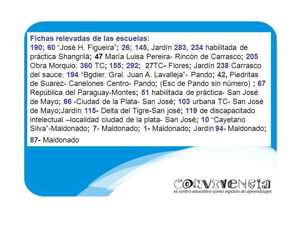 Fichas relevadas de las escuelas: 190; 60 José H. Figueira; 26; 145, Jardín 283, 234 habilitada de práctica Shangrilá; 47 María Luisa Pereira- Rincón