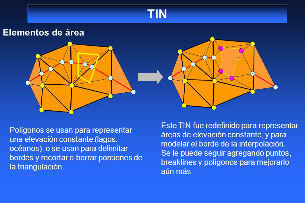 TIN Elementos de área Polígonos se usan para representar una elevación constante (lagos, océanos), o se usan para delimitar bordes y recortar o borrar