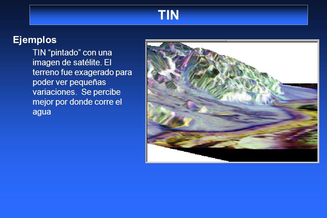 TIN Ejemplos TIN pintado con una imagen de satélite. El terreno fue exagerado para poder ver pequeñas variaciones. Se percibe mejor por donde corre el