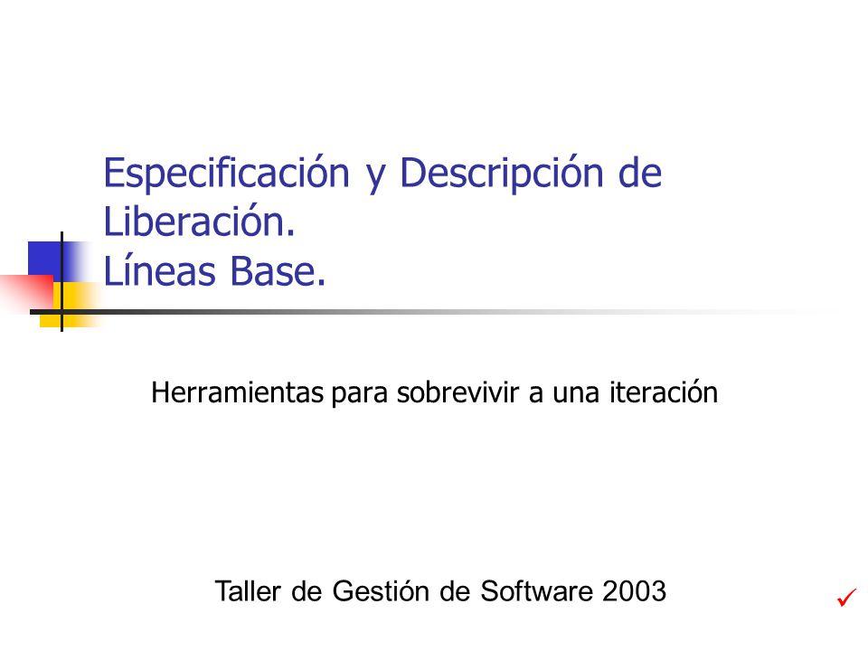 Conclusiones Especificación de la liberación Permite concentrarse durante la iteración en un solo documento Es un referente para todos los actores Descripción de la liberación Presenta los resultados de la iteración con respecto a lo planteado en la especificación de liberación.