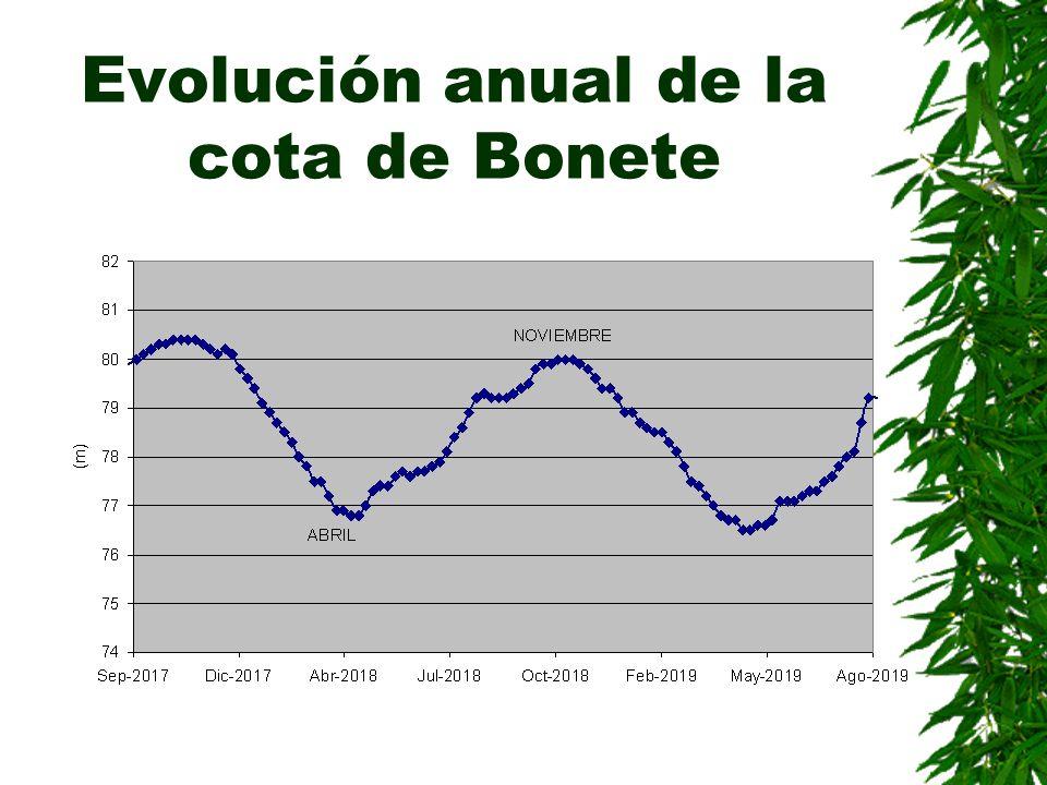 Evolución anual de la cota de Bonete