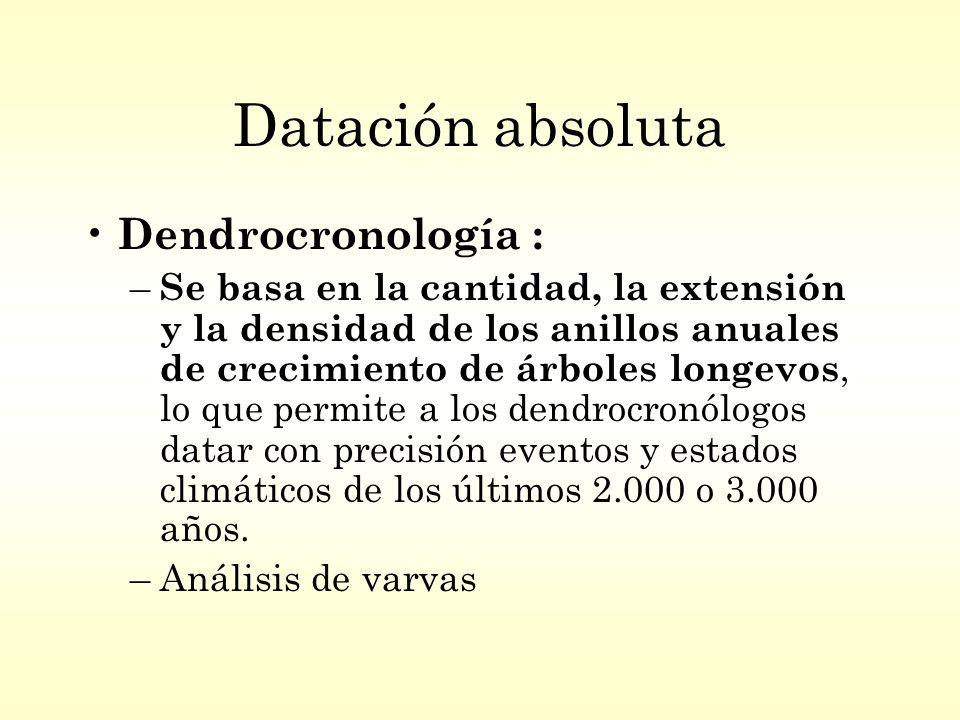 Datación absoluta Dendrocronología : – Se basa en la cantidad, la extensión y la densidad de los anillos anuales de crecimiento de árboles longevos, lo que permite a los dendrocronólogos datar con precisión eventos y estados climáticos de los últimos 2.000 o 3.000 años.