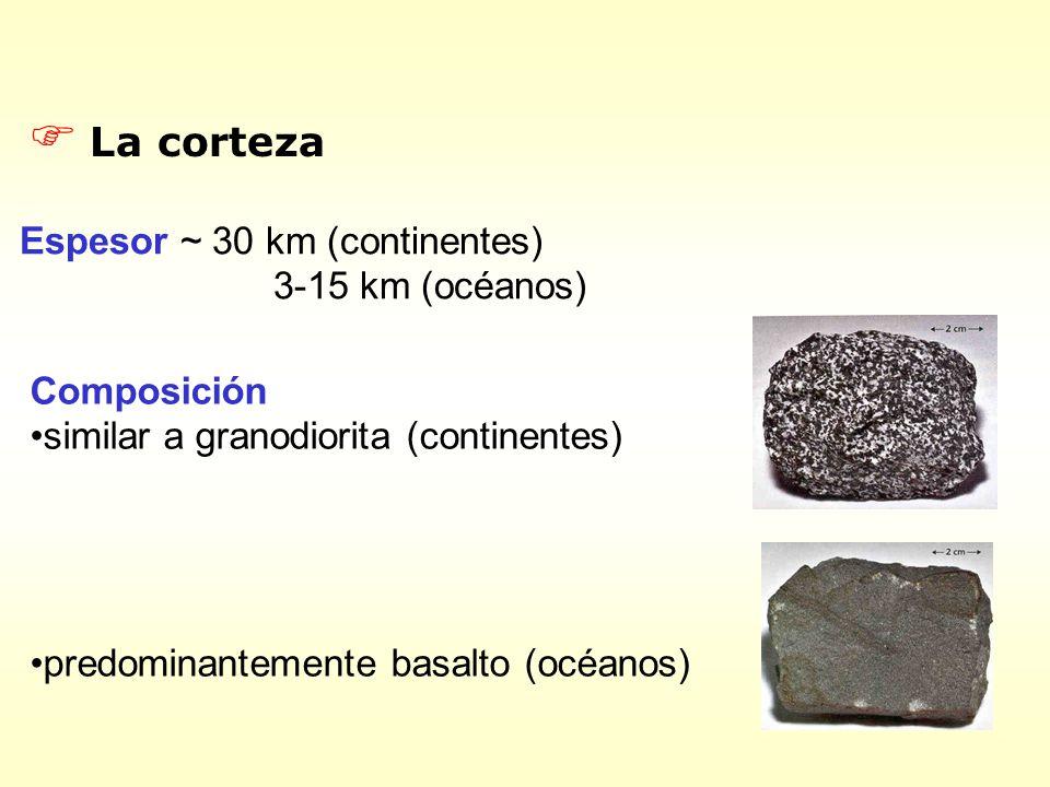 F La corteza Espesor ~ 30 km (continentes) 3-15 km (océanos) Composición similar a granodiorita (continentes) predominantemente basalto (océanos)