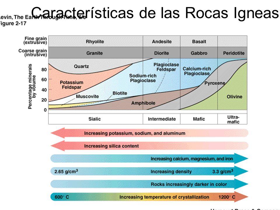 Características de las Rocas Igneas